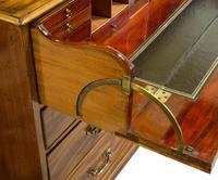 Geo III Mahogany Secretaire Bookcase (6 of 10)