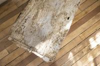 19th Century Rustic Painted Country House Trunk - Coffee Table (5 of 16)
