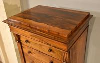 Regency Rosewood Wellington Chest of Drawers (9 of 10)