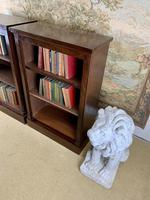 Pair of Late Victorian Mahogany Bookcases (5 of 5)