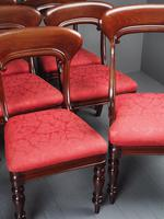 Set of 12 Scottish Mahogany Dining Chairs (15 of 18)