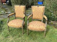 Pair of French Armchairs in Original Paint Finish (3 of 10)