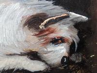 Pair of Victorian 19th Century Oil Paintings Terrier Dogs Ratting Signed J Langlois (9 of 35)