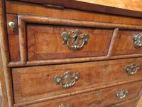 Small Antique Burr Walnut Bureau Bookcase (9 of 12)