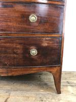 Georgian Mahogany Bow Front Chest of Drawers (15 of 16)