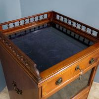 Display cabinet and chest (3 of 10)