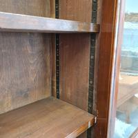 Large Antique Museum Cabinet c.1900 (3 of 7)