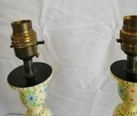 Pair of Kashmir Painted Lamps (3 of 6)