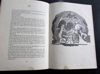 1967 1st Edition, James & The Giant Peach - A Children's Story by Roald Dahl (3 of 5)