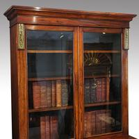 William IV Rosewood Cupboard Bookcase (8 of 9)