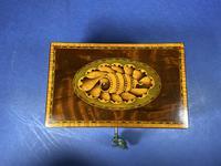 18th Century Mahogany Twin Tea Caddy with Shell Inlay (8 of 17)