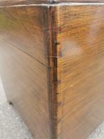 Large Camphor Wood Trunk (4 of 13)