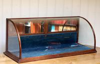 19th Century Counter Top Display Cabinet (4 of 11)