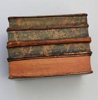 Scarce Novelty Drinking Set Contained in Secret Stack of Books c.1890 (13 of 15)