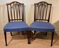 George III Mahogany Sheraton Period Side Chairs