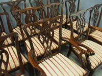 Set of 12 Georgian Style Mahogany Dining Chairs (5 of 12)