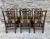 Set of 6 Georgian Mahogany Dining Chairs (5 of 21)