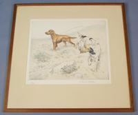 Gun Dogs Hunting G Vernon Stokes Signed Limited Edition Spaniel
