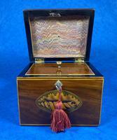 18th Century Mahogany  Shell Inlaid Tea Caddy (9 of 18)