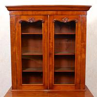 Library Glazed Bookcase Mahogany 19th Century Victorian Display Cabinet (3 of 11)