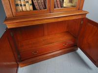 Antique George IV Mahogany 2 Door Cabinet Bookcase (11 of 13)