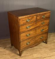 Georgian Caddy Top Mahogany Chest of Drawers (6 of 7)