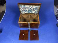 18th Century Mahogany Twin Tea Caddy with Shell Inlay (9 of 17)