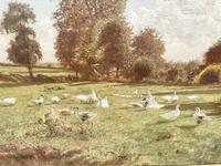 Arrival of the Geese - Oil on Canvas Signed & Dated Edwad Rawstorne 1858 (3 of 7)