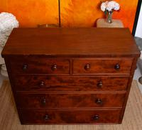Cuban Mahogany Chest of Drawers 19th Century (13 of 14)