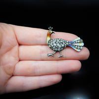 Antique Enamel and Paste Silver Peacock Bird Brooch Pin (10 of 10)