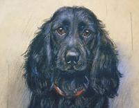 Marion Harvey 1886-1971 Portrait of a Black Spaniel (9 of 9)