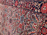 Antique Sarouk Rug (5 of 8)