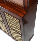 Pair of Regency Library Bookcases Display Cabinets c.1820 (7 of 12)