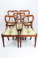 Set of 5 Antique Victorian Mahogany Balloon Back Chairs (7 of 13)