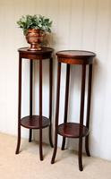 Pair of Edwardian Mahogany Jardinière Stands (3 of 10)