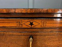 Regency Inlaid Mahogany Chest of Drawers (11 of 18)