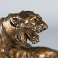 Stunning 19th Century French Bronze Sculpture of Two Tigers by E.Drouot (5 of 11)