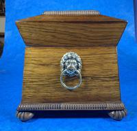 Regency Rosewood Brass Foliate Inlaid Tea Caddy (3 of 15)