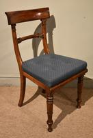 Set of Six William IV Dining Chairs (7 of 7)