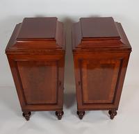 Pair of Regency Mahogany Pedestal Cabinets (3 of 8)