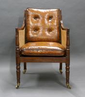 Georgian Mahogany Bergere Chair (3 of 7)