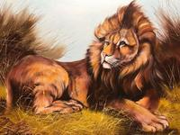 Fine Art Vintage 20th Century Oil Canvas Painting Recumbent Lion Portrait Signed (8 of 12)