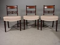 Attractive Set of 3 Regency Period Mahogany Framed Chairs (2 of 8)