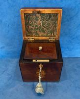 18th Century Harewood Inlaid Single Mahogany Tea Caddy (6 of 18)