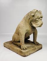 Rare Late 19th Century English Limestone Bulldog (8 of 14)