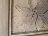 Italian Moulded Plaster Relief Panel Depicting Grotesque Mask (3 of 3)