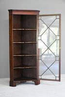 Antique Mahogany Astragal Glazed Cabinet (3 of 12)