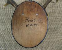 Antique Antlers on Shield (5 of 5)
