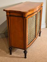 George III Satinwood Chiffonier Side Cabinet (4 of 9)