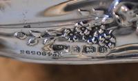 Fine Art Nouveau silver dressing table set (10 of 11)